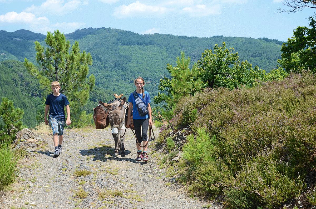 Eselwandern an der Ardeche und in den Cevennen