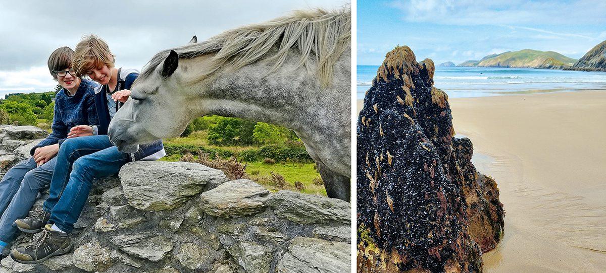 Wandern und Baden in Irland